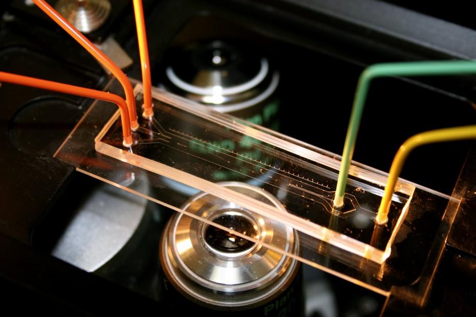 Microchannel